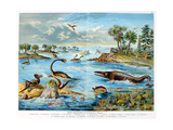 Prehistory - Jurassic - Reconstruction of Natural Environment in Europe and Some of the Animals… Giclee Print by German School