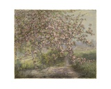 A Blossoming Apple Tree Giclee Print by Juliette Wytsman