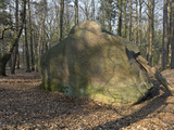 Giebichen Stone, Erratic Boulder of the Ice Age (C.200000 - 250000 Years Ago), Stockse, Nienburg… Photographic Print