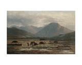 Peat Bog, Letterfrack, Connemara Giclee Print by Bartholomew Colles Watkins