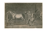 A Horse Courser Selling a Nag - Caveat Emptor Giclee Print by Thomas Burford