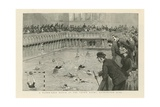 A Waterpolo Match at the Crown Baths Giclee Print