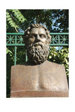 Sophocles (496-406). Bust Contemporary of Sophocles. Athens. Central Greece Giclee Print