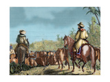 Argentina. Gauchos Driving Cattle Giclee Print