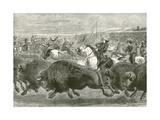 The Wild West at the Great American Exhibition - Hunting Bison and Wapiti Deer Giclee Print