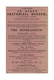 Advert for Dr Kahn's Anatomical Museum Giclee Print