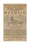 Advertisement for Harry Phillips' Living Mythological Mermaid Giclee Print