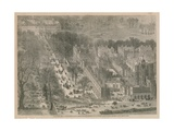 Bird's Eye View of Buckingham and St James's Palaces Giclee Print