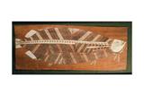 Aboriginal Bark Painting Depicting a Fish Giclee Print