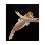 A Wood Carving of a Whale Giclee Print