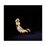 Small Flat-Bottomed Ivory Carving of a Sea Bird, Probably a Gaming Piece Giclee Print