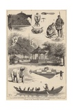 Sketches at the International Fisheries Exhibition Giclee Print by Thomas Harrington Wilson