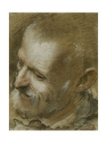 Study of the Head of a Bearded Man Turned to the Left, 1590 Giclee Print by Federico Fiori Barocci or Baroccio