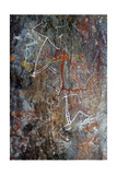 Aboriginal Rock Painting of Mimi Spirits from the Kakadu National Park Giclee Print