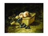 Peaches and Grapes Giclee Print by Carducius Plantagenet Ream