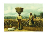 The Cotton Field Giclee Print by William Aiken Walker