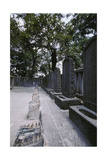The Tombs of the 47 Ronin at Sengaku Temple Giclee Print