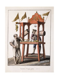 Seller of Iced Water; and Neopolitan Costume of the Wagon; Venditore D'Acqua Gelata; and Costume… Giclee Print by Saviero Xavier Della Gatta
