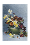 Daffodils and Wallflowers in a Green Vase, 1890 Giclee Print by Rose Maynard Barton