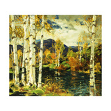 Birches Giclee Print by Jonas Lie