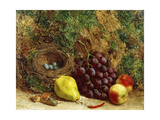 Grapes, a Pear, Peaches and a Bird's Nest by a Mossy Bank, 1864 Giclee Print by William Hughes