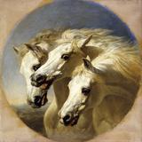 Pharaoh's Horses, 1848 Giclee Print by John Frederick Herring Snr