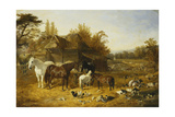 A Farmyard with Horses and Ponies, Berkshire, Saddlebacks, Alderney Shorthorn Cattle, Bantams,… Giclee Print by John Frederick Herring I