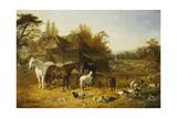A Farmyard with Horses and Ponies, Berkshire, Saddlebacks, Alderney Shorthorn Cattle, Bantams,… Giclee Print by John Frederick Herring I