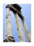 The Roman Forum Giclee Print