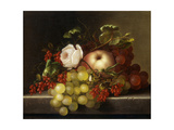Still Life with Peach, Grapes and Rosehips, 1865 Giclee Print by Adelheid Dietrich
