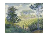Vineyards under the Pines; Les Vignobles Sous Les Pins, C. 1898 Giclée-Druck von Paul Ranson