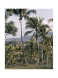 Borobudur Giclee Print