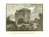 Blarney Castle Giclee Print