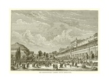 The Horticultureal Gardens, South Kensington Giclee Print