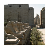 Avenue of the Rams at the Temple of Amun, Karnak Giclee Print