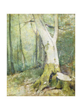 Interior Woodland Giclee Print by Emil Carlsen