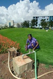 Woman Watering Flowerbed in Hospital Garden with Recycled Water from Dewats Photographic Print