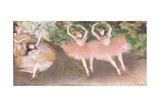 Scene De Ballet, C.1879 Wydruk giclee autor Edgar Degas