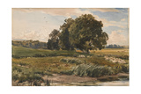 Study of Trees in Parham Park Giclee Print by Thomas Collier