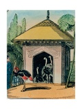 Ostrich and Emu House at the London Zoo. 1840s Giclee Print