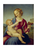 Mary and the Infant Christ, C.1508 Reproduction procédé giclée par  Raphael