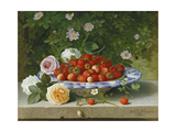 Strawberries in a Blue and White Buckelteller with Roses and Sweet Briar on a Ledge, 1871 Giclee Print by William Hammer
