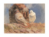 Doves Resting on a Rooftop, Belles Roches, Lausanne, 1856 Gicleetryck av Henry Moore