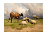 A Cow and Five Sheep, 1887 Giclee Print by Thomas Sidney Cooper