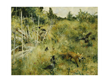 A Fox Taking a Crow; Rav Och Krakor, 1884 Impression giclée par Bruno Andreas Liljefors