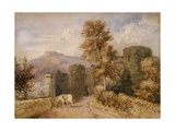 The White Pony, C.1831 Giclee Print by David Cox