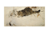 A Cat Stalking a Mouse in the Snow, 1892 Giclee Print by Bruno Andreas Liljefors