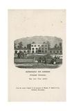 Bermondsey Spa Gardens Giclee Print