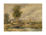 The Hayfield, C.1897 Giclee Print by David Cox