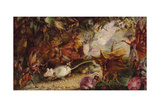 The Chase of the White Mouse Giclee Print by John Anster Fitzgerald